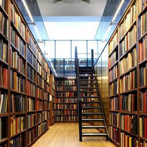 Библиотеки Русского Камешкира