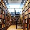 Библиотеки в Русском Камешкире