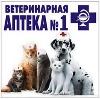 Ветеринарные аптеки в Русском Камешкире